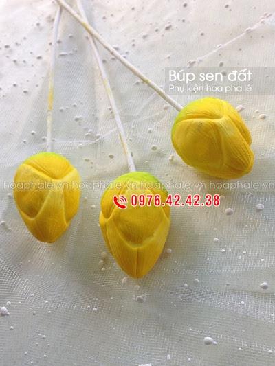 Phu kien hoa pha le tai Dong Mac
