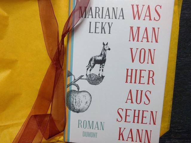 http://www.dumont-buchverlag.de/buch/leky-was-man-von-hier-aus-sehen-kann-9783832198398/