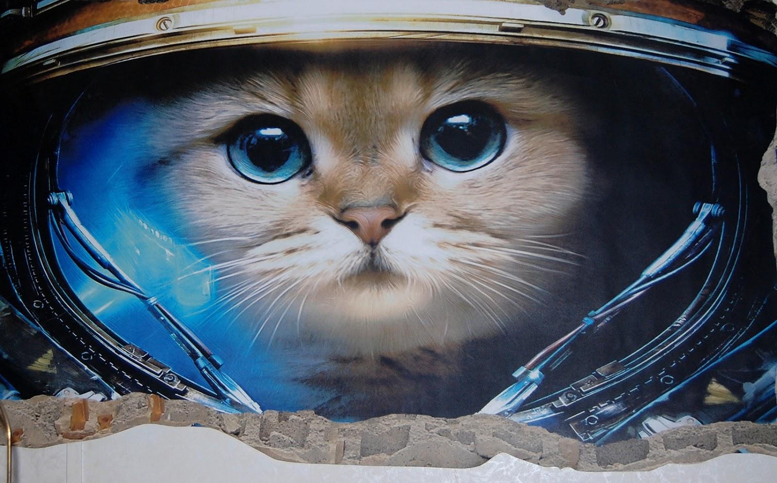 Lisa's Free Stuff: 3D Mural Wall Art Startonight Astronaut ...