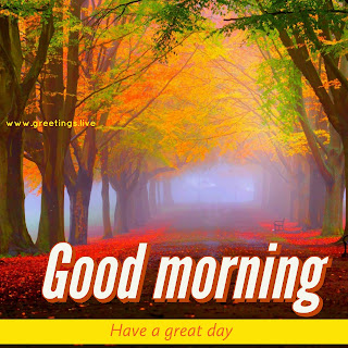 Beautiful Nature images with Good morning greetings live
