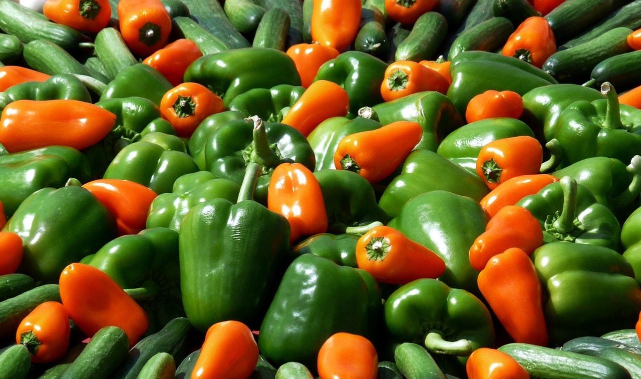 Paprika Food Market