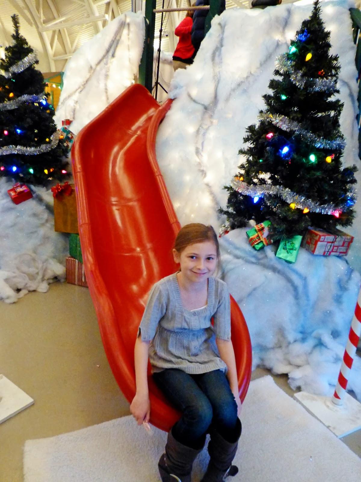Theresa\'s Mixed Nuts: A Christmas Story~ Santa\'s Mountain
