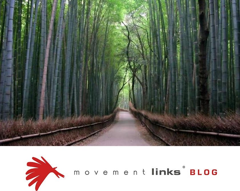 Movement Links Blog