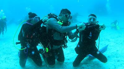 Baby Shark Dance Challenge Underwater Raja Ampat Papua
