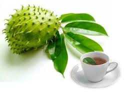 The Amazing of Health Benefits of soursop leaves for diet