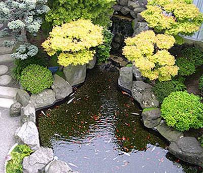 10 inspirasi desain kolam ikan hias minimalis - inspirasi