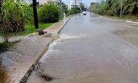 Αιγιαλεία: Πλημμύρες και πτώσεις δέντρων από την κακοκαιρία