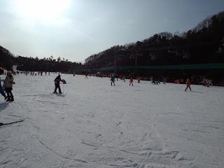 Ski Resort - Korea Tour - Salika Travel