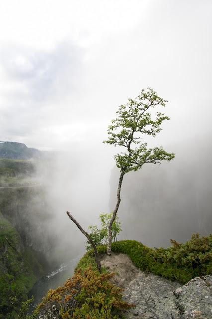 Cascata Voringfossen