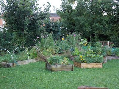 Je suis accro au jardinage ! Est-ce grave ?