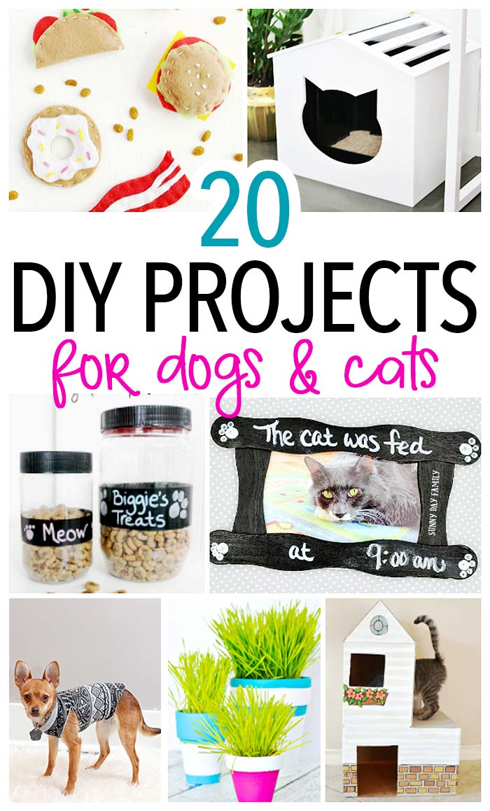 Awesome DIY pet projects you'll want to try if you have a cat, a dog, or both! Find fun DIY toys, treats, and home accents for dogs and cats. Perfect for pet lovers or to make as gifts!
