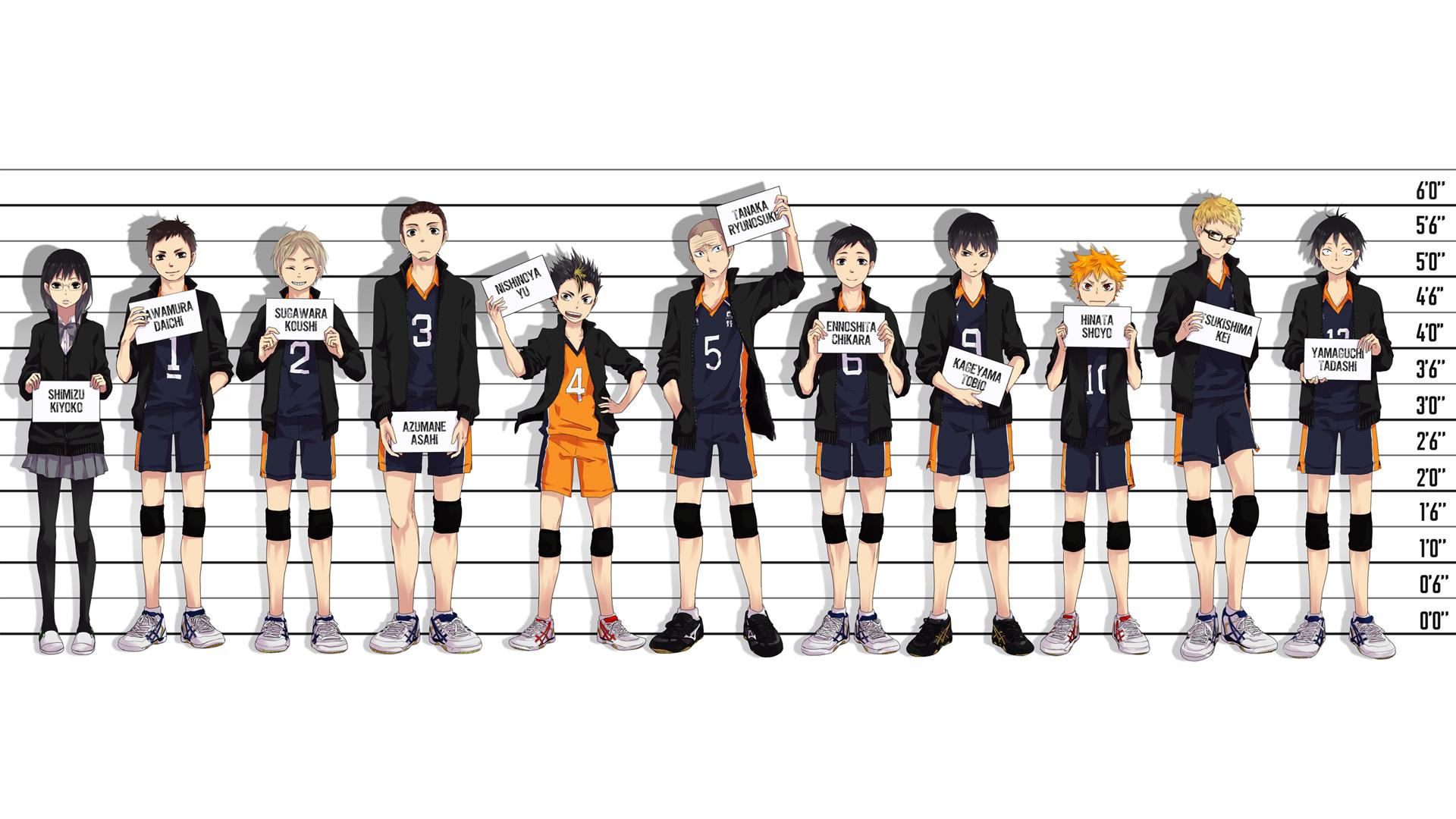Karasuno High Haikyuu Anime 14 Wallpaper HD