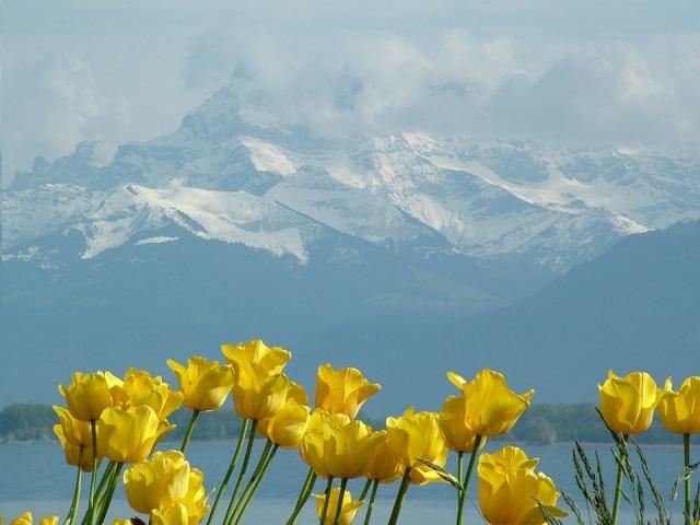 Mont Blanc, Swiss