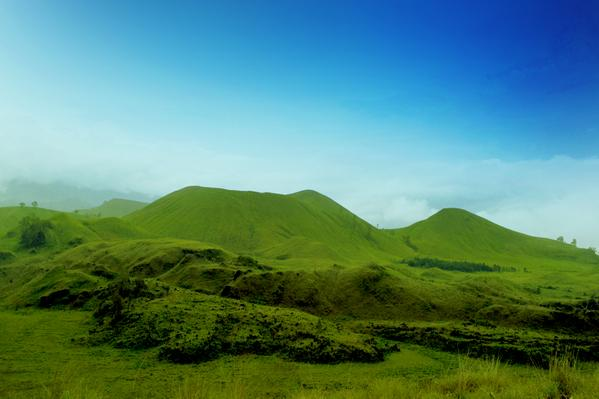 Bukit teletubbies Kawah Wurung Bondowoso.
