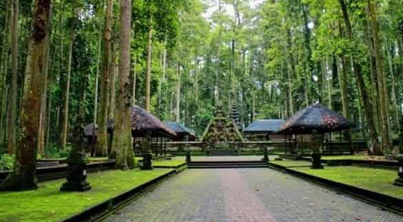 Sangeh Monkey Forest tempat wisata di Bali ala bacpacker