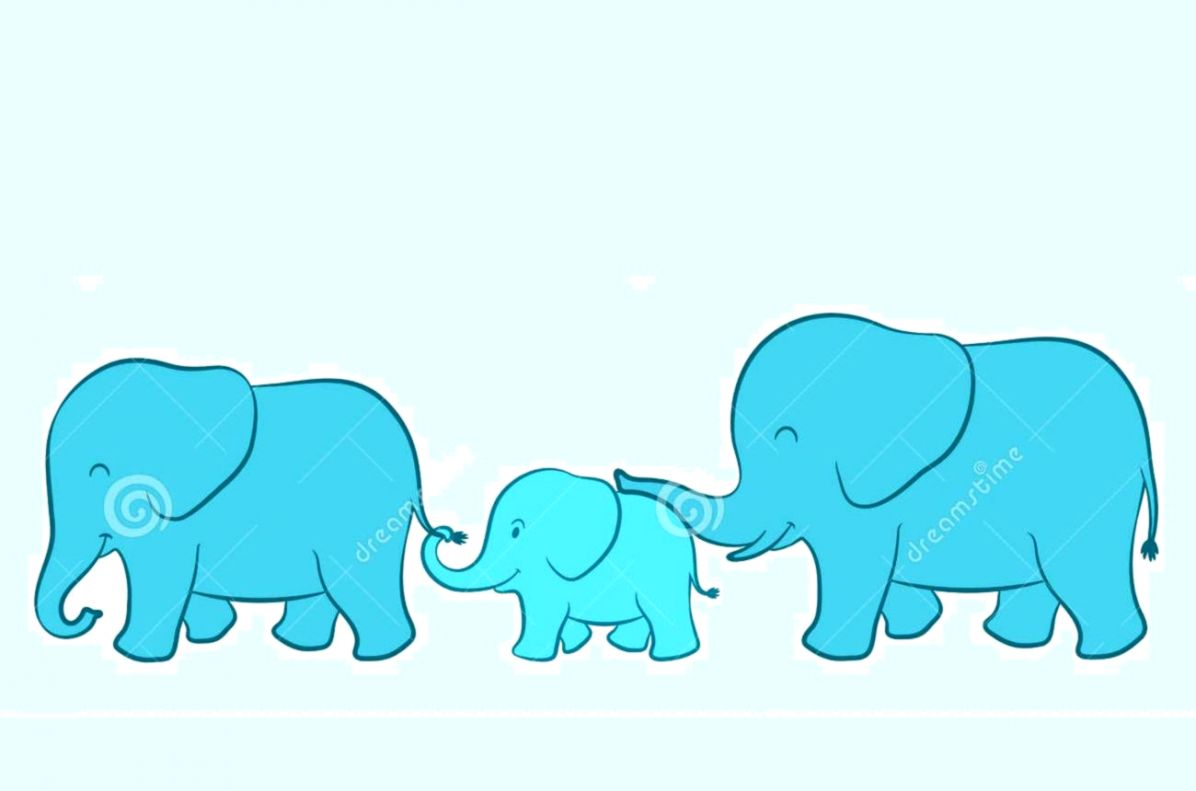 Baby Elephant And Family Wallpaper Desktop Wallpapers Memes