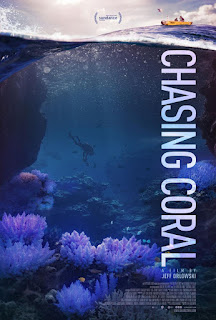 Chasing Coral<br><span class='font12 dBlock'><i>(Chasing Coral )</i></span>