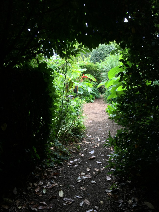 Tredegar-House-&-gardens-orchard-garden-dark-tunnel-leading-to-lush-planting