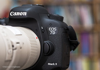 Testimony of the Modern Autofocus System - Canon EOS 7D Mark II