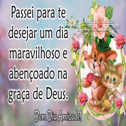 Passei para te desejar   um dia maravilhoso   e abençoado na graça   de Deus.  Bom Dia Amizade!