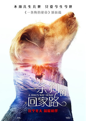 A Dogs Way Home Movie Poster 6