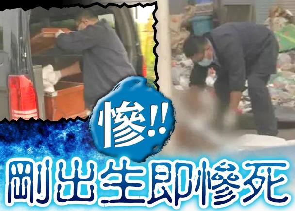 Bayi baru Lahir Ditemukan Di Tempat Sampah, Dibuang Ibu dan Ayahnya