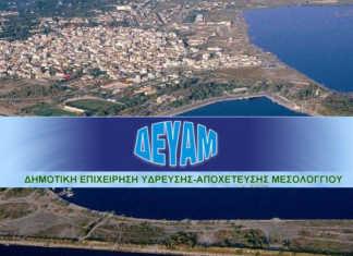 Αποτέλεσμα εικόνας για ΑΓΡΙΝΙΟΛΙΚΕ DEYAM