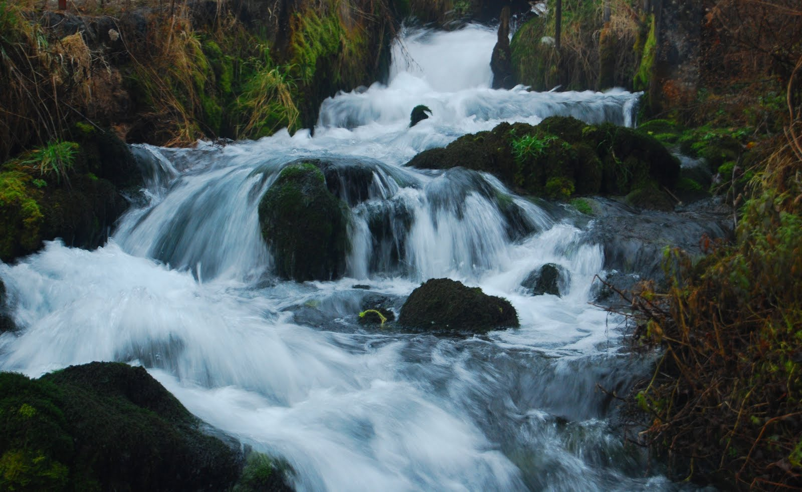 colored garden: The sound and beauty of rushing water