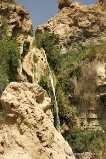 Israel Travel Guide, Ein Gedi, Pictures