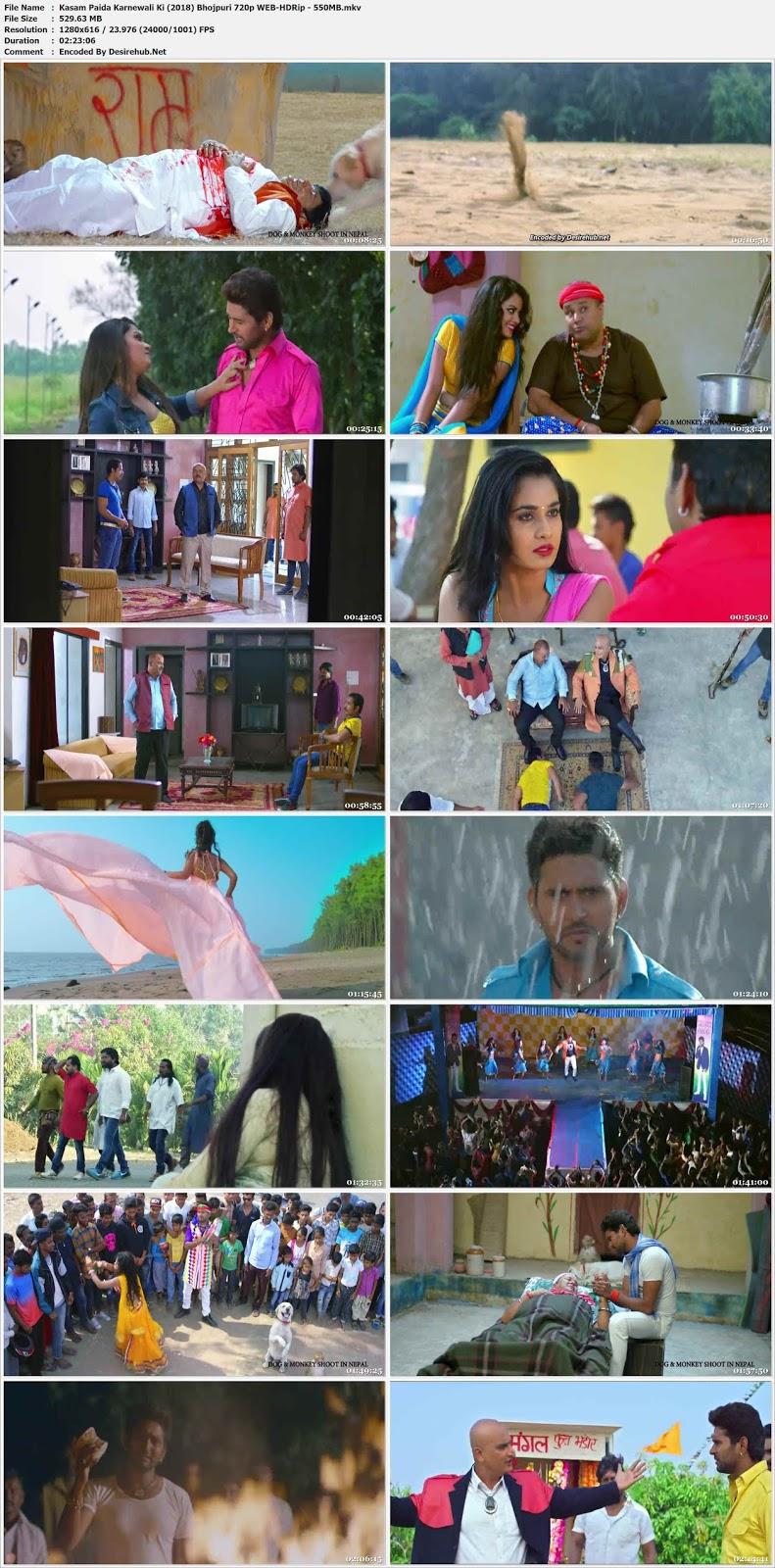 Kasam Paida Karnewali Ki (2017) Bhojpuri 720p WEB-DL – 550MB Desirehub