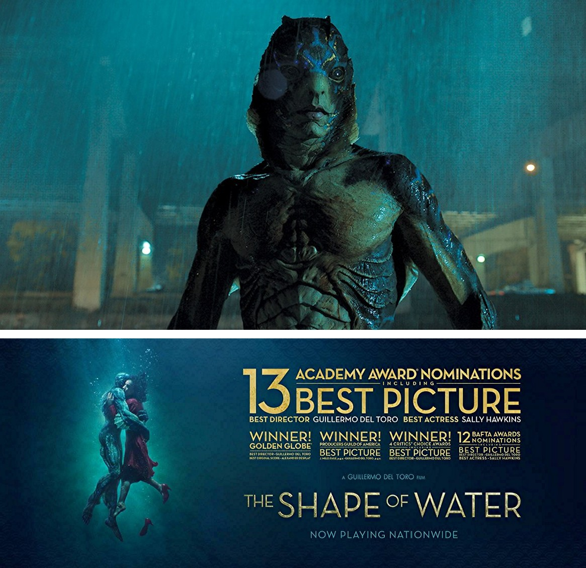 Shukernature The Shape Of Water A Shukernature Review