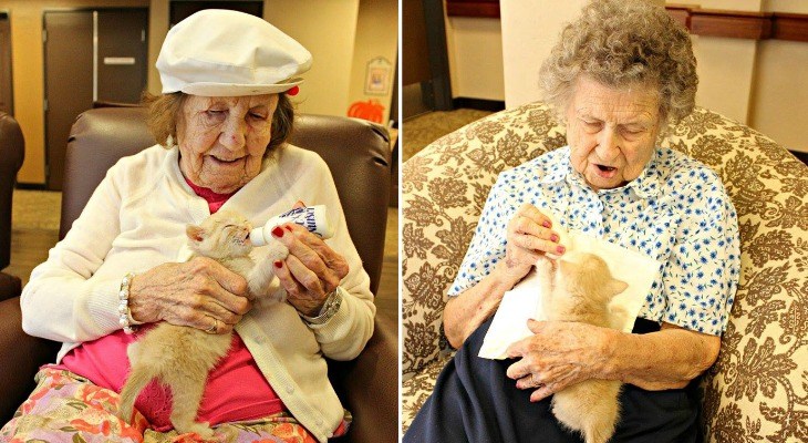 This Is What Happens When An Animal Shelter Partners With An Elderly Care Facility…