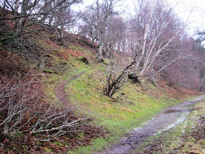 Deeside walks: walkers around Ballater should ignore this path