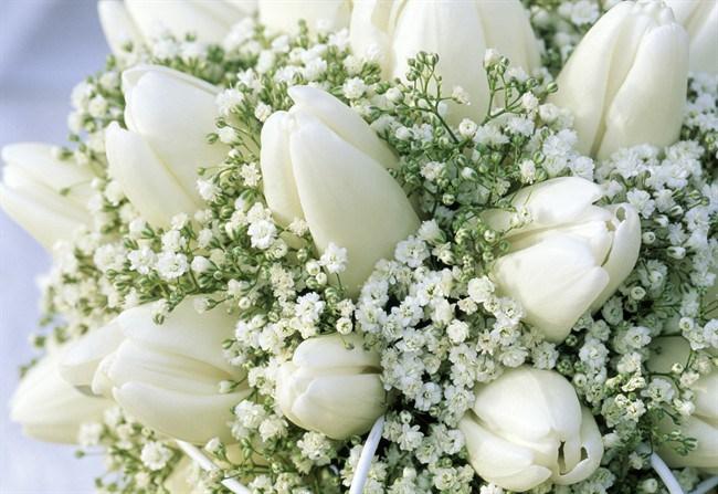 bouquet tradizioni matrimonio. I confetti. Il confetto dovrebbe essere  morbido e ... de126a1e66b