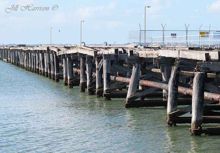 Life Images by Jill: On the waterfront, Bunbury, Western