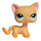 Littlest Pet Shop 3-pack Scenery Cat Shorthair (#339) Pet