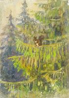 Squirel in Pine Tree, France, Nikolai Becker