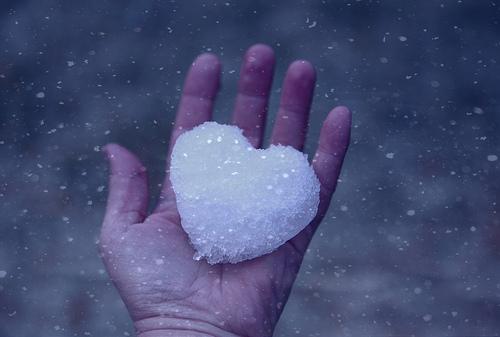 The Cold and Stony Heart – shanebryantsite