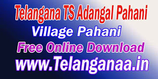 Telangana TS Village Adangal Pahani Free Online Download mabhoomi.telangana.gov.in