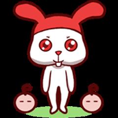 Pako Pako the Popular White Bunny