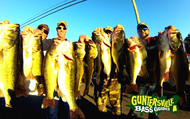 fishin com lake guntersville fishing report september 16th