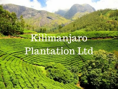 Kilimanjaro-plantation-ltd