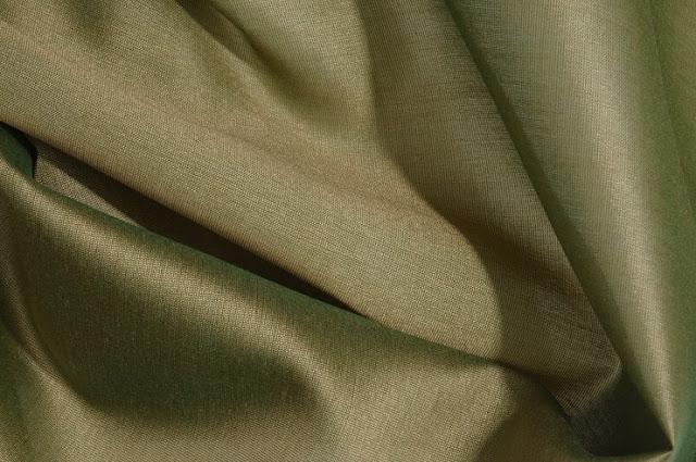 Iguana Green Cotton Silk Fabric
