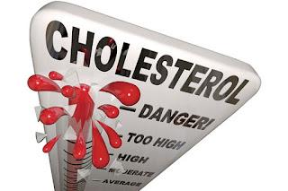 Obat Herbal Untuk Menurunkan Kolesterol Dengan Cepat