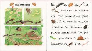 8 - Je lis avec les animaux de la campagne