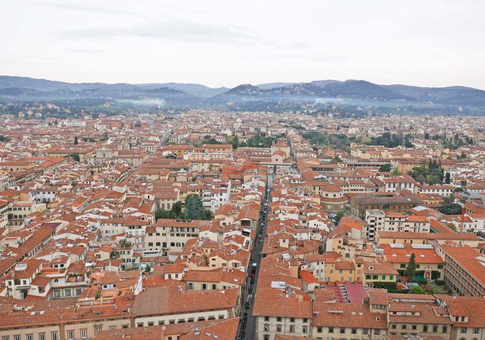 Florence en Italie vue du haut du Duomo