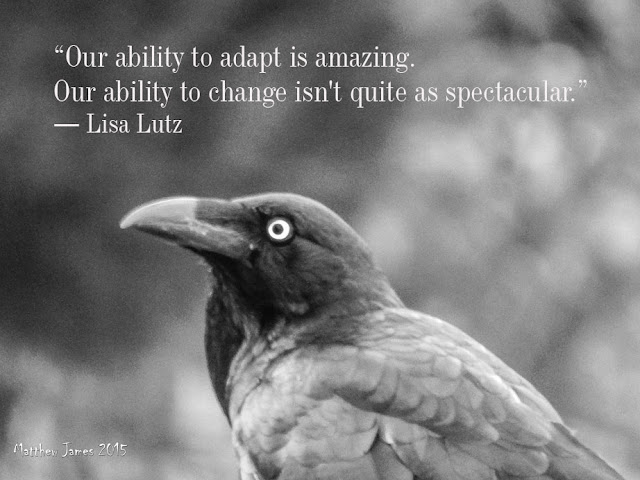 """Our ability to adapt is amazing. Our ability to change isn't quite as spectacular"" - Lisa Lutz"