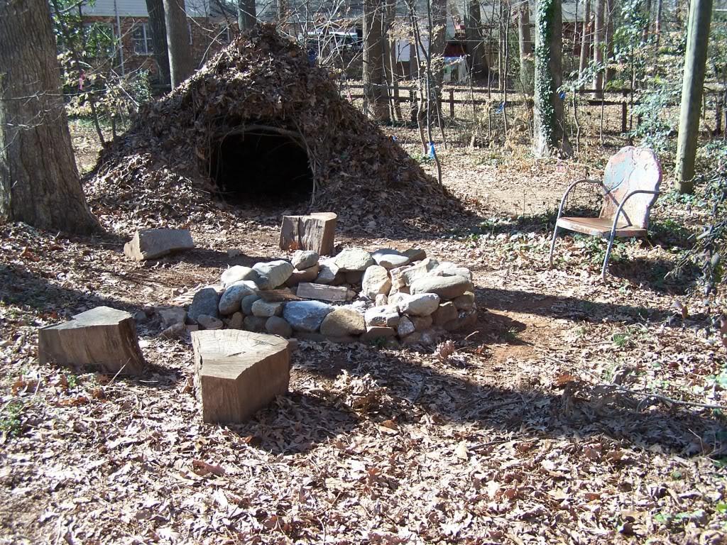 vegans living off the land semi permanent debris shelters. Black Bedroom Furniture Sets. Home Design Ideas