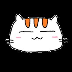 Pi Pi Cat
