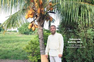 toborochi-palma.JPG